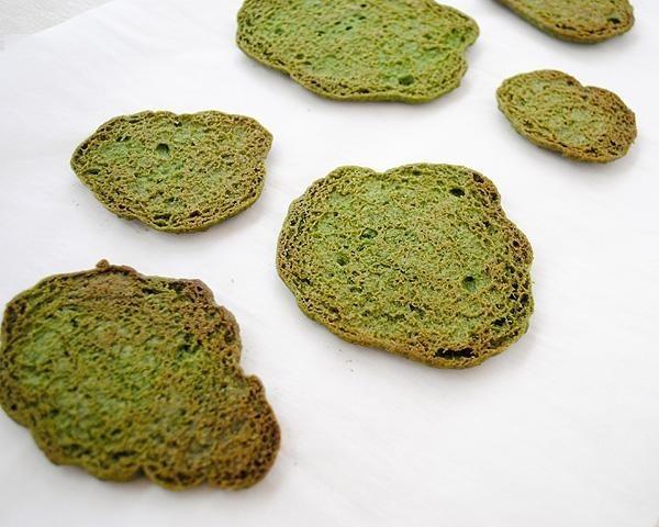 Рецепт необычного сахарного печенья ввиде съедобного мха