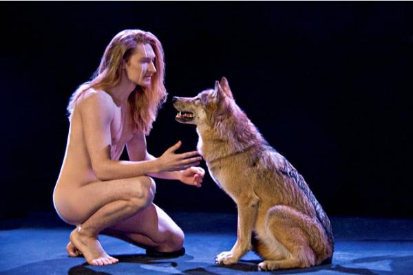 Дробыш: «Шоу с волками будет, номер не отменим»