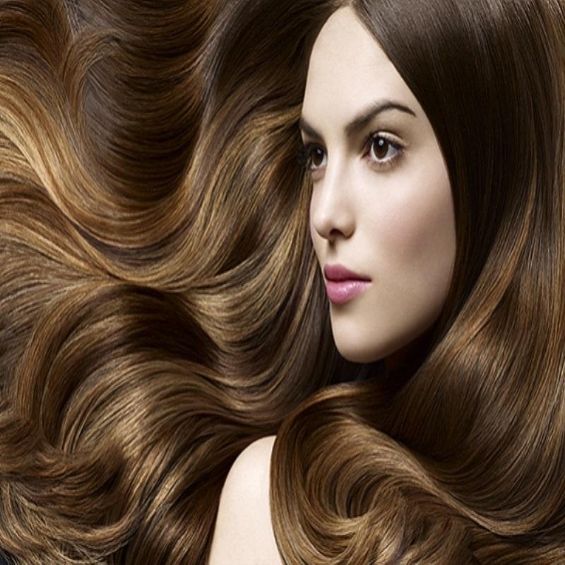 Восстановление по полной программе: какие масла для волос выбрать