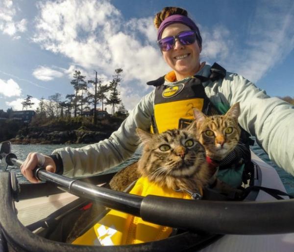 Милота дня: канадские коты-туристы Болт и Кил