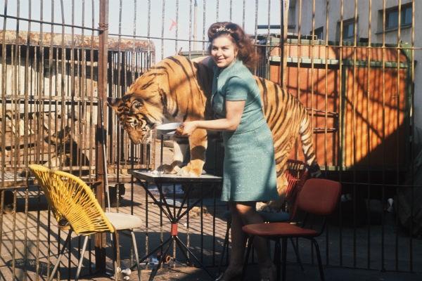 Маргарита Назарова: боль и потери легендарной укротительницы
