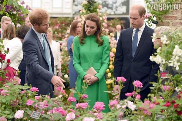 Герцогиня Кэтрин перевоспитала супруга