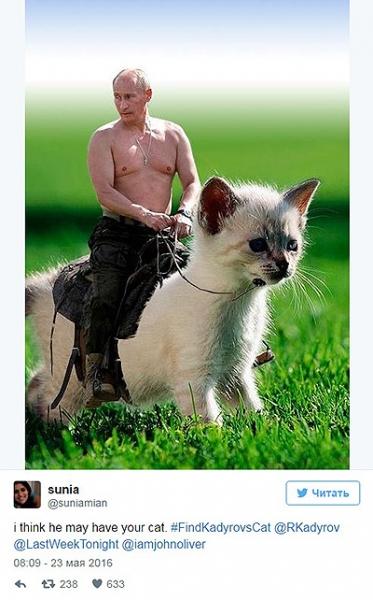 Рамзан Кадыров потерял кота: ведущий HBO организовал поиски, а интернет заполонили мемы
