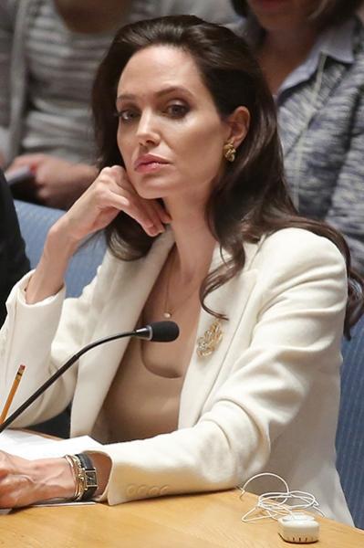 Темы лекций Анджелины Джоли: оружие, права женщин и проблемы окружающей среды