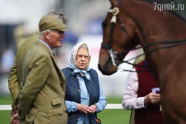 Елизавета II выиграла на скачках скидку в универсаме