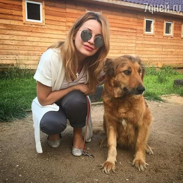 Ольга Орлова ищет дом для друга