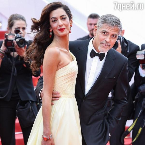 Супруга Джорджа Клуни встречается с фанатами за деньги