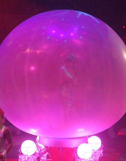 Появление беременной Собчак на манеже цирка наделало много шума