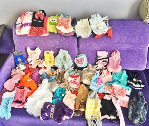 Анфиса Чехова бесплатно раздает одежду