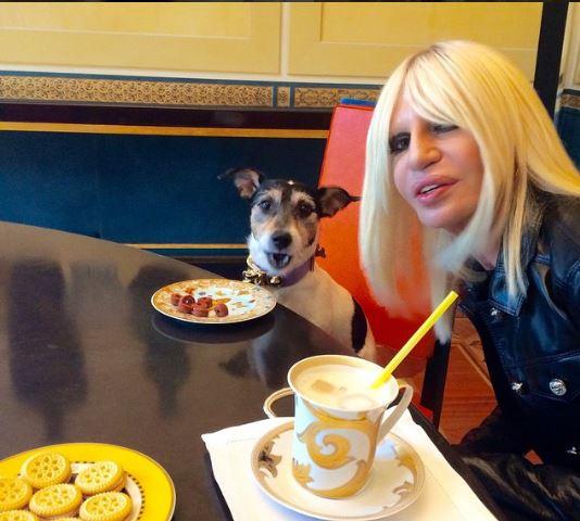 Донателла Версаче наняла помощника своей собаке