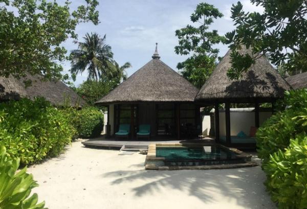 Летучая отмечает медовый месяц на Мальдивах