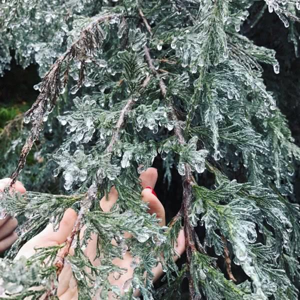 Ужасно красиво: ледяной дождь взорвал соцсети