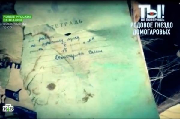 Сын Александра Домогарова намерен исправить его ошибки