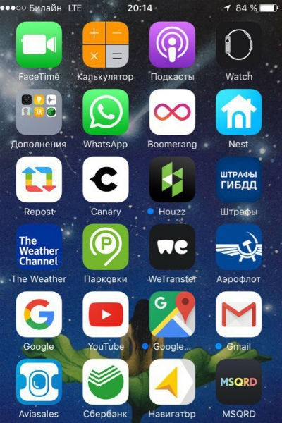 Звезда на связи: какие тайны хранятся в телефоне Мити Фомина