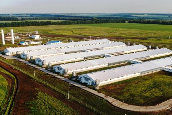 Преимущества использования PIR иPUR сэндвич-панелей при возведении агропромышленных комплексов