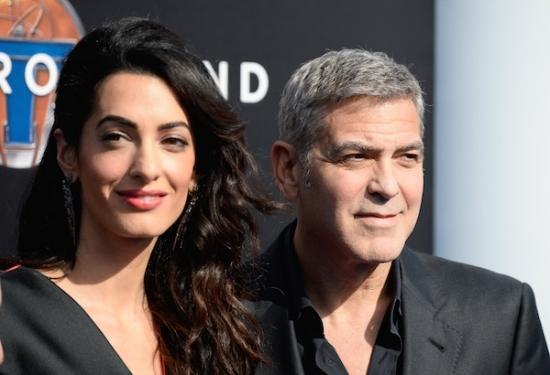 Джордж и Амаль Клуни пожертвовали 10 тысяч долларов на спасение собак
