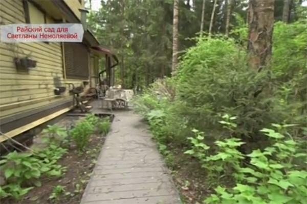 Светлана Немоляева восстановила дачу после разрушительного урагана