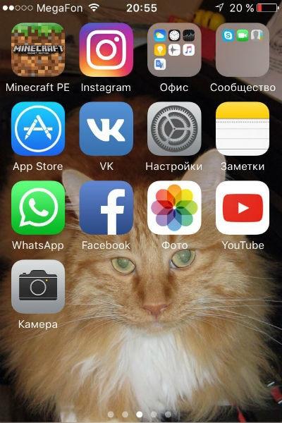 Что скрывает юная «Ревизорро» в своем телефоне