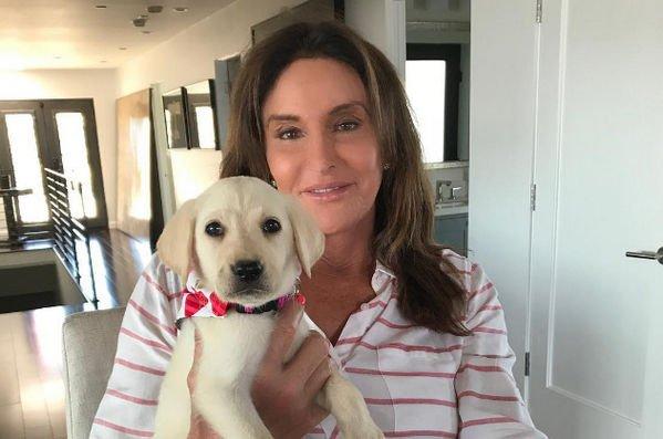 Кейтлин Дженнер прокомментировала новость о беременности Кайли
