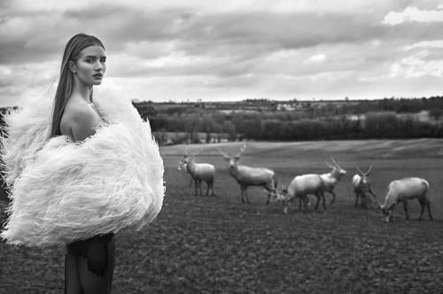 Рози Хантингтон-Уайтли в арабском Harper's Bazaar дает советы моделям