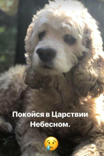 Дочь Александра Серова: «У нас огромная трагедия»