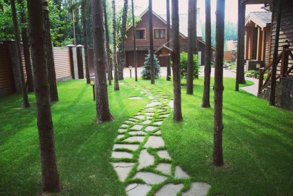 Ландшафтный дизайн: 10стильных идей обустройства участка