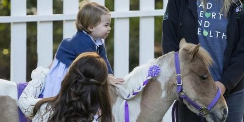 Принцесса Шарлотта готовится стать наездницей