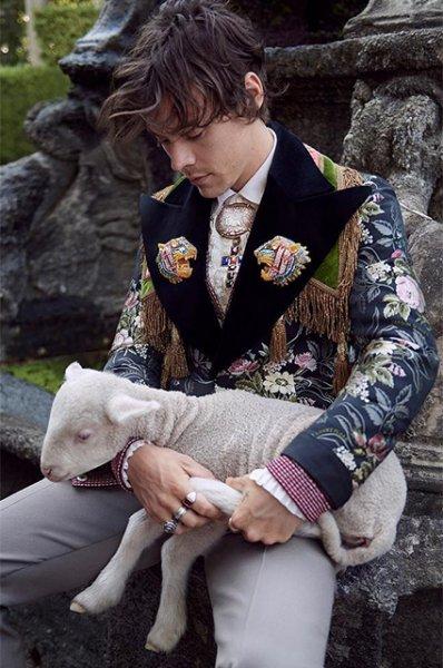 Модный дайджест: от жалоб Памелы Андерсон на Prada до поросят в рекламе Gucci