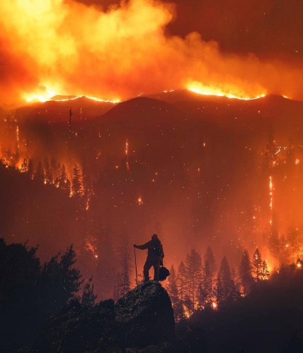 Пожары в Калифорнии разрушили дома знаменитостей