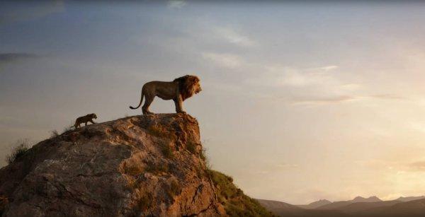 Король проката: фильм «Король Лев» - лидер мирового бокс-офиса
