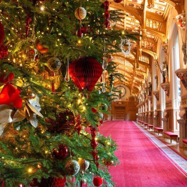 Королева Елизавета произносит ежегодную рождественскую речь, отмечая победы и недочеты уходящего 2019 года