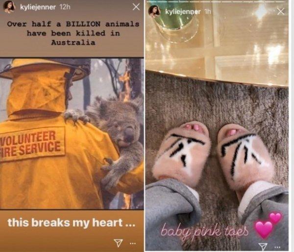 Кайли Дженнер пожертвовала 1 миллион долларов на борьбу с лесными пожарами в Австралии