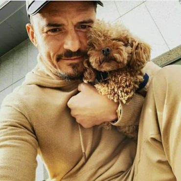 Celebrities who took animals from the shelter