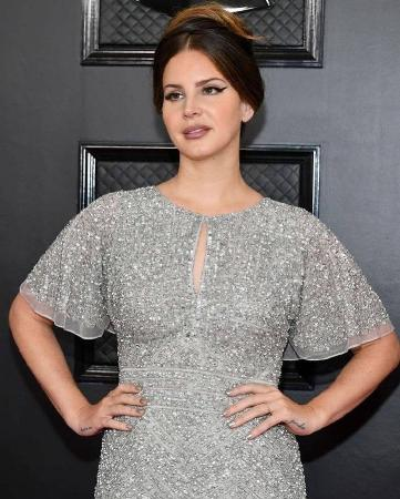 Lana Del Rey came to the Grammy awards in a dress from the Mall