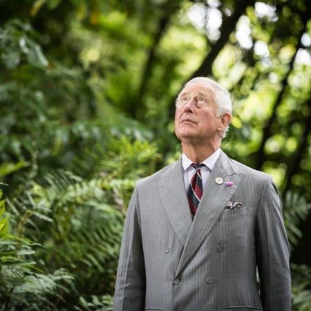 """Встреча принца Чарльза и Греты Тунберг: разговор о """"зеленом налоге"""" и новых проектах"""